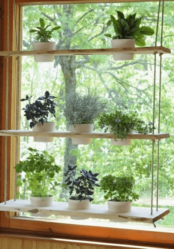 Window plant shelf diy hanging for bedroom small spaces decoration ideas