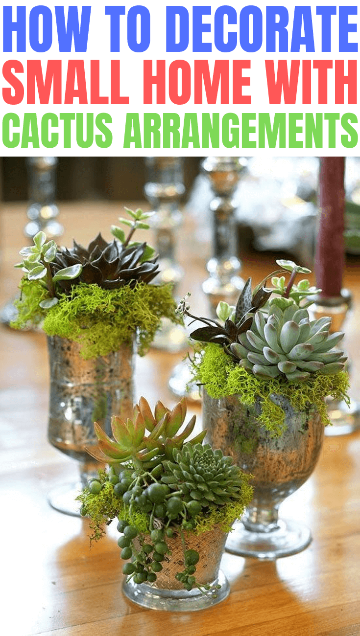 HOW TO DECORATE SMALL HOME WITH CACTUS ARRANGEMENTS