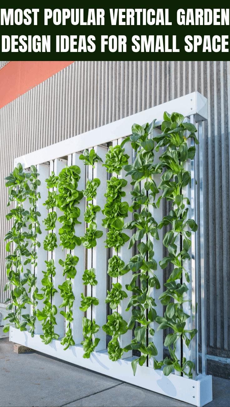 MOST POPULAR VERTICAL GARDEN DESIGN IDEAS FOR SMALL SPACE