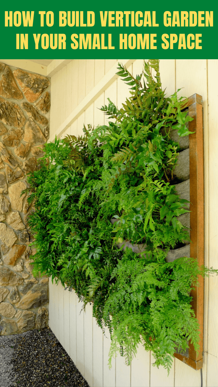 HOW TO BUILD VERTICAL GARDEN IN YOUR SMALL HOME SPACE
